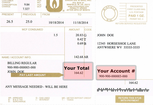 You will need your Account Number and your Total to pay online. See areas in red marked above.